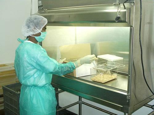 Bioseguridad en Bioterios de Experimentación (Parte I) e35bbc7f1c